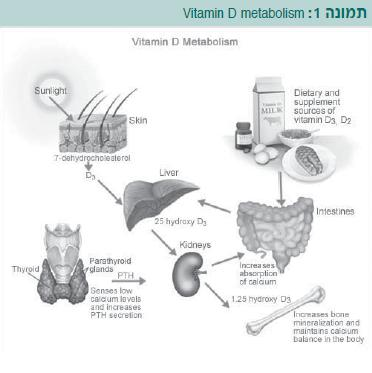 Vitamin D deficiency1.jpg